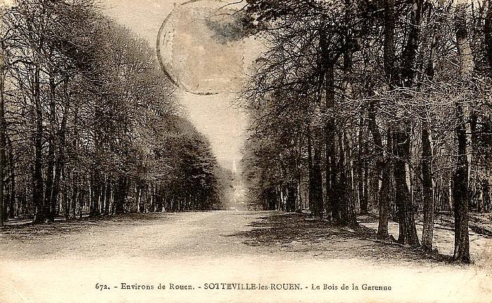 Bois de la Garenne - Sotteville-lès-Rouen