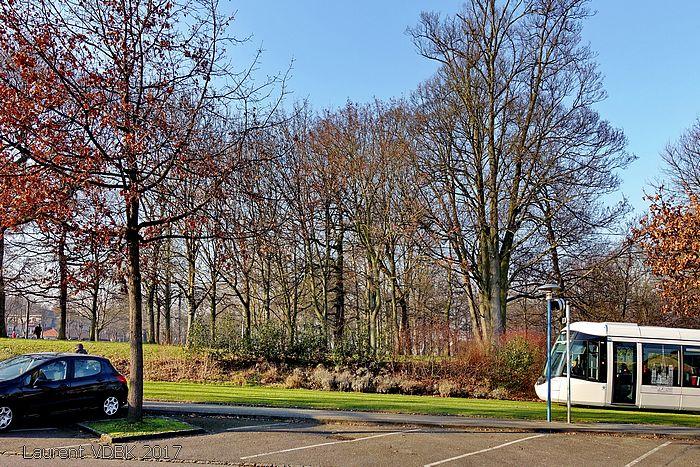 Sotteville-lès-Rouen, avenue Jean Jaurès
